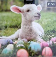 Lamb Easter Card