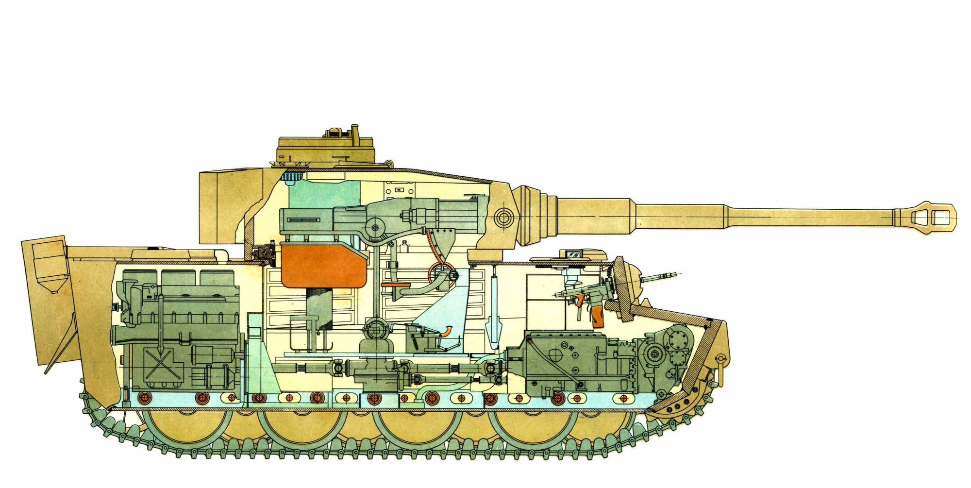 Tiger 1 section