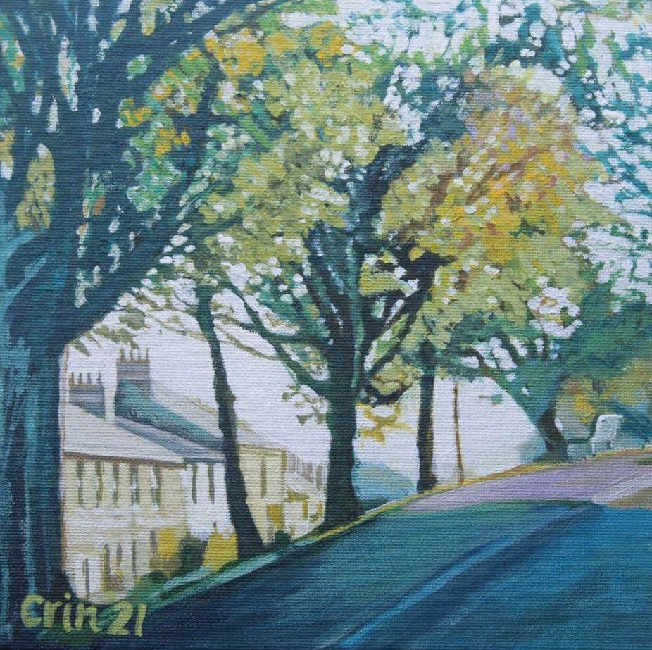 Lord Street Trees