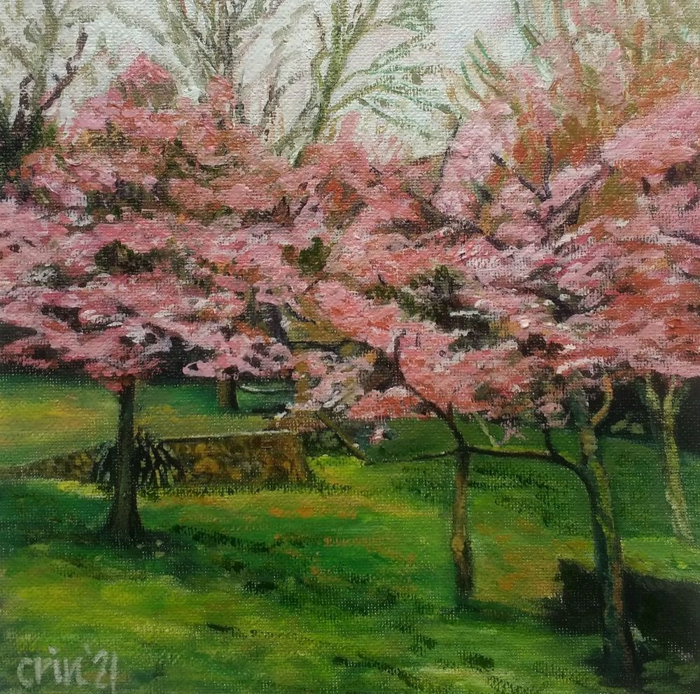 Blossom in the Kymin