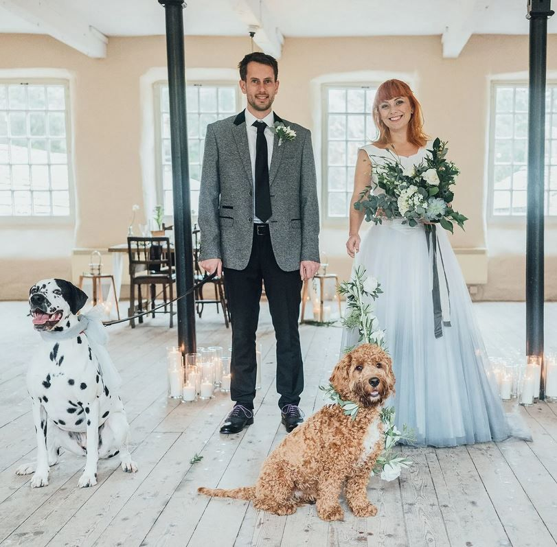 Bride & groom with doggy friends