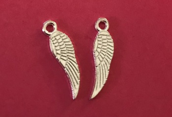 Mini Wing Charms