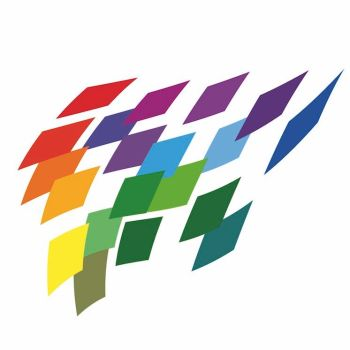 2018 Flying colours LOGO