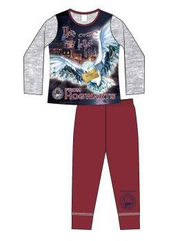 "*Code:33887, Official ""Harry Potter"" Girls Pyjama £4.40. pk18..."