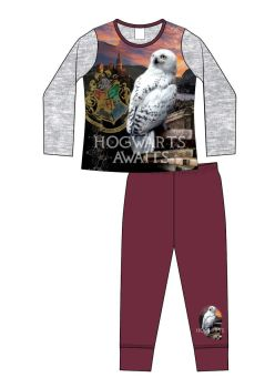 "*Code:34385, Official ""Harry Potter"" Girls Pyjama £4.50.  pk18..."