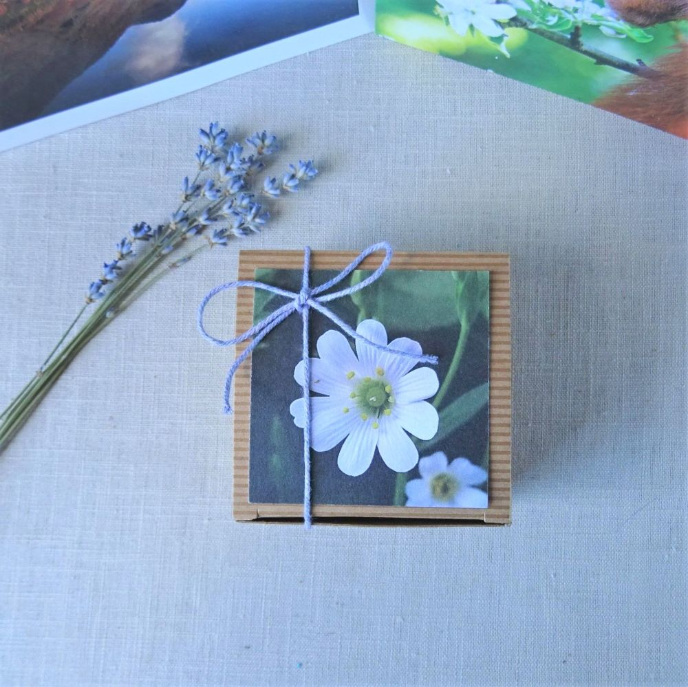 View of top of mini soap gift box showing gift tag and twine tie with 3 lav