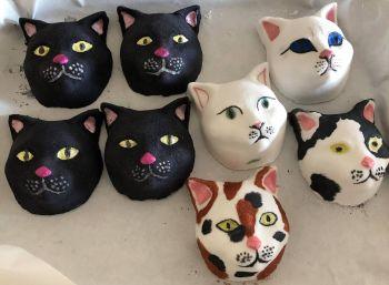 Cat Bath Bomb