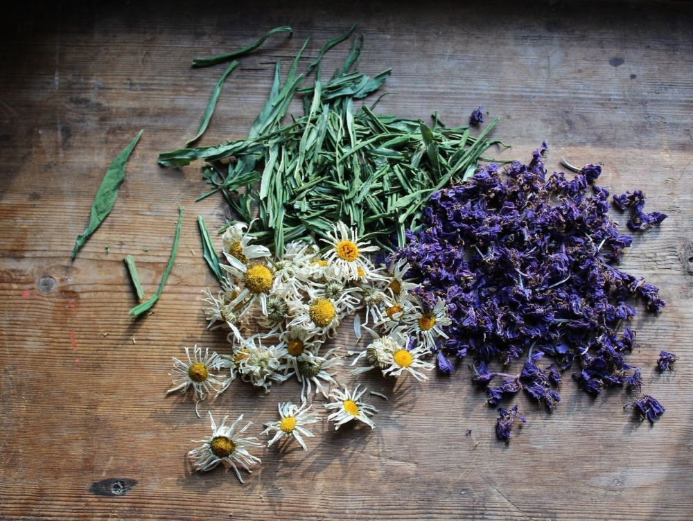 GREEN WITCHERY COURSE - HERBS, RITUAL, ESSENTIAL OILS, TINCTURES, BALMS AND