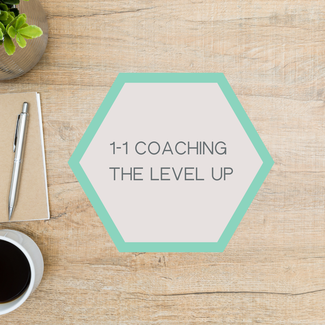 1-1 Coaching & Support - The Level Up