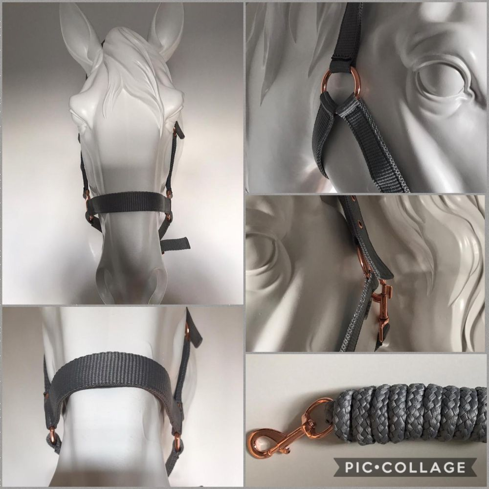 Head Collar & Lead Rope Sets