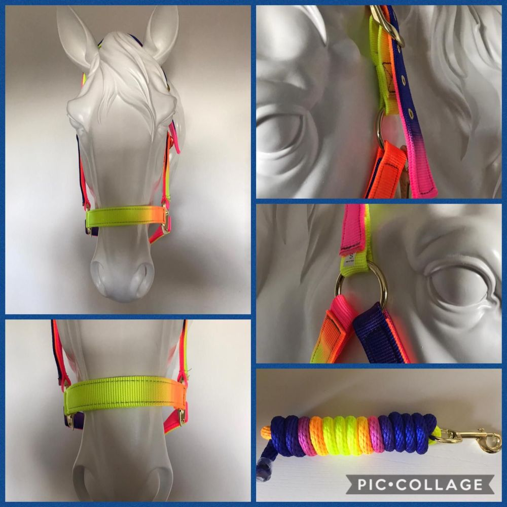 Head Collar Sets