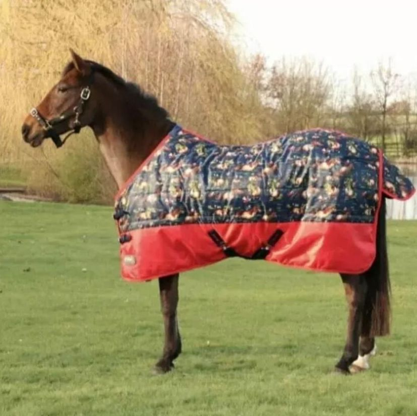 Winter Stable & Turnout Rugs