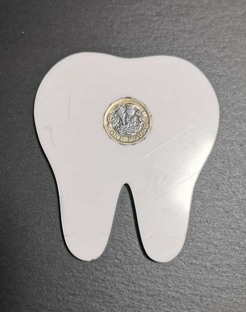 Tooth fairy coin holder blank - Acrylic - 10cm x 9cm