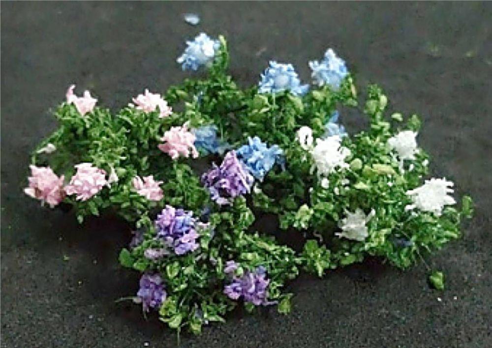 Tasma Product 00908  Hydrangea plants (12)
