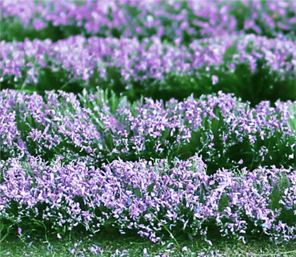 Tasma 00712  Lavender (125mm x 155mm Sheet)