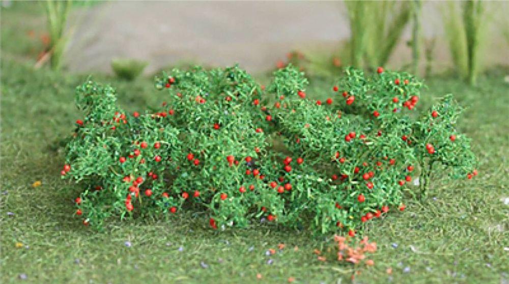 Tasma 00682  Tomato plants (16)