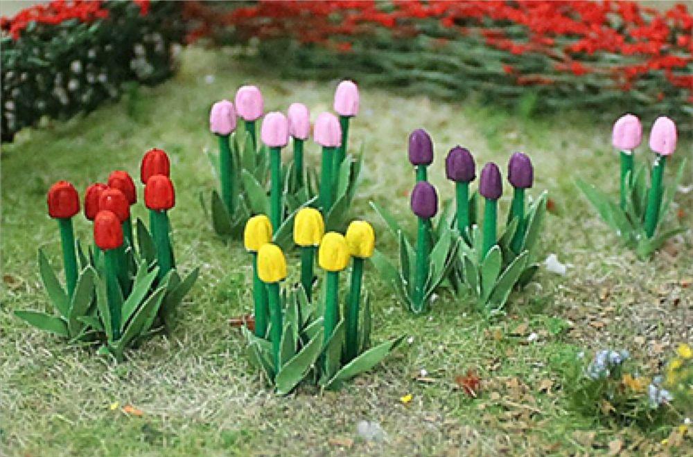 Tasma 00675  Tulipss (44)