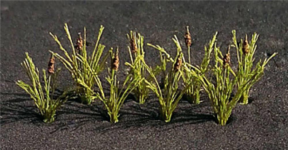 Tasma 00909  Bulrushes (20)