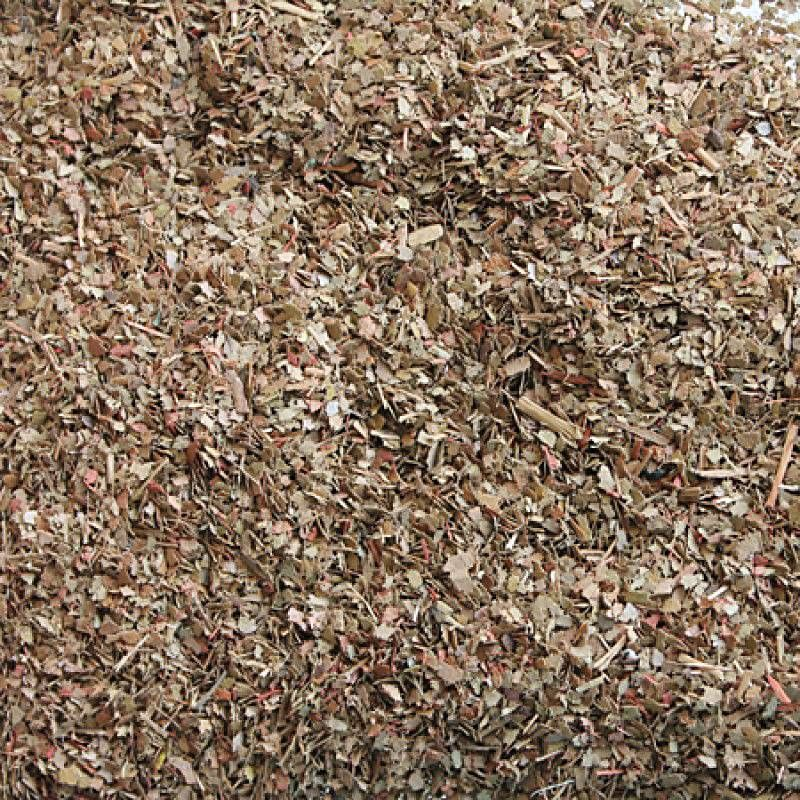 Tasma 00935  Dried Leaves