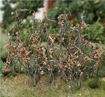 Tasma 00937  Dry Leaf Branches (50)