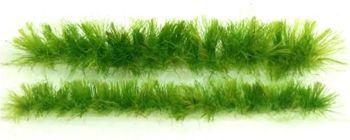 Tasma 01012  5mm Light Green Pathway (75mm long - 6 per pack)