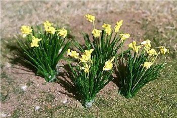 Tasma 01002  Daffodils (18 per pack)