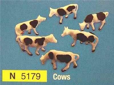 N5179  Cows