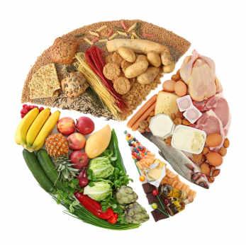 Food Testing Kinesiology