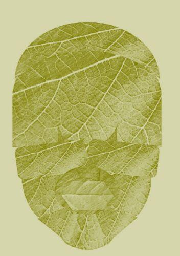 Leaf_Face_Olive