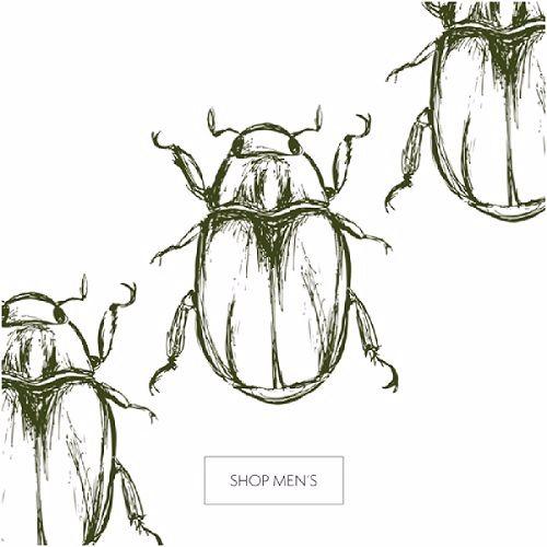 beetle_500