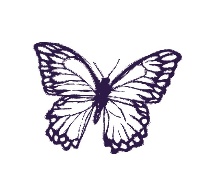 Soveral Butterfly Revised Final-01