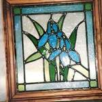 Irises in frame