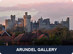 gallerybutton_arundel