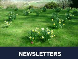 eventbuttons_newsletter2