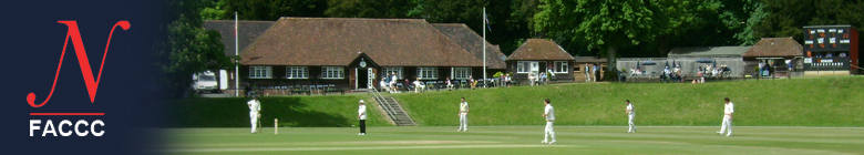 Friends of Arundel Castle Cricket Club, site logo.