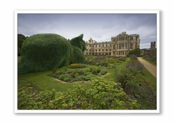 Topiary Cat Audley End