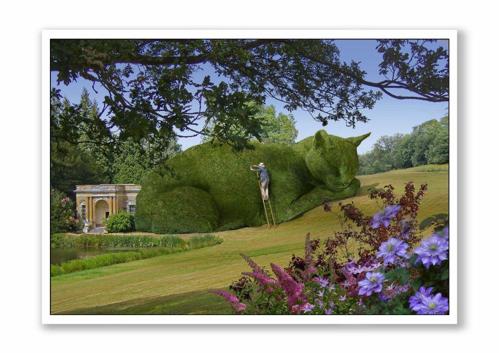 Topiary Cat Maintenance