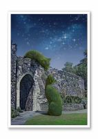 Topiary Cats Hertford Castle Moonlight Tryst
