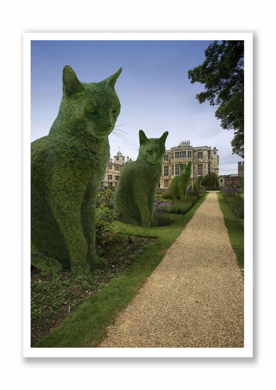 Topiary Cat - The Avenue