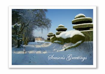 Topiary Cat Seasons Greetings