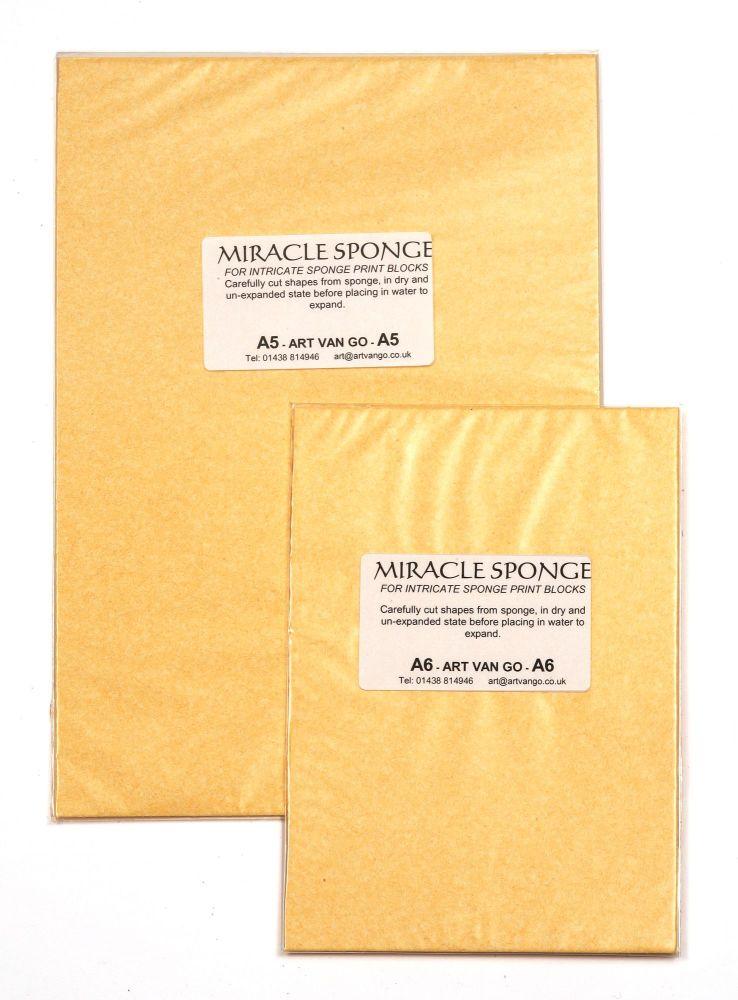 Miracle Sponge!