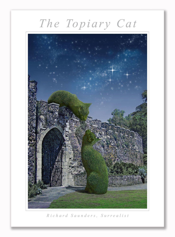 Topiary Cat On Wall Moonlit - Art Print - 29.5x42cm