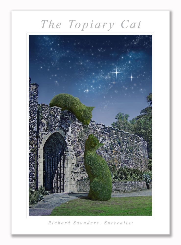 Topiary Cat On Wall Moonlit - Art Print - 29.5x42cm
