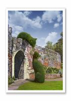 Topiary Cats Hertford Castle Daytime Tryst