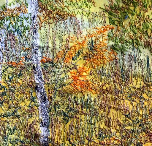 Nodeen Salmon Silver Birch in Autumn 2.1