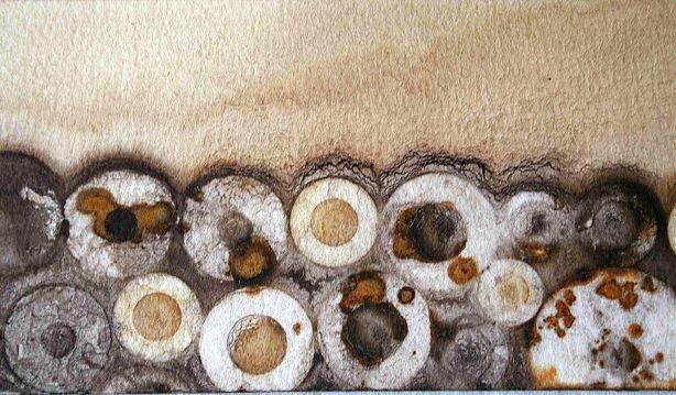 Alice Fox Rust Marks detail.2