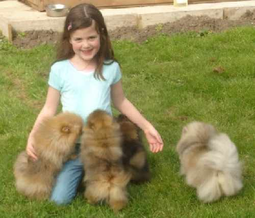 Lauren and her poms