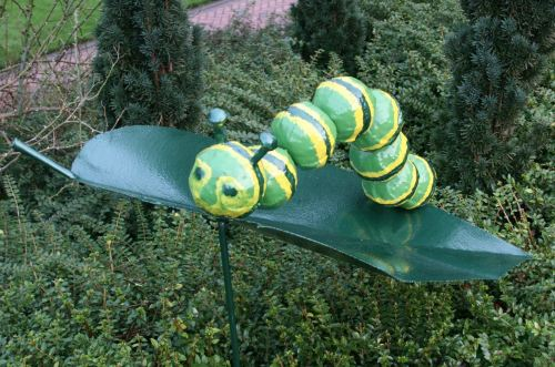 Wisley 2016 Caterpillar Leaf