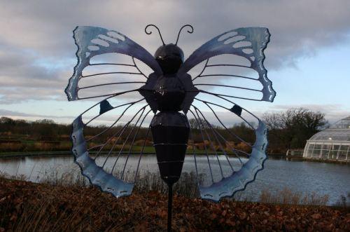 Wisley 2016 Blue Wing