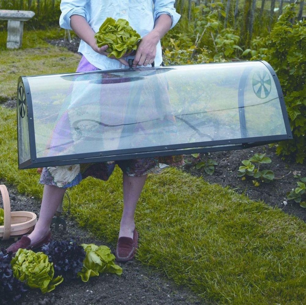 Haxnicks Kitchen Garden Cloche Plant Grow Tunnel